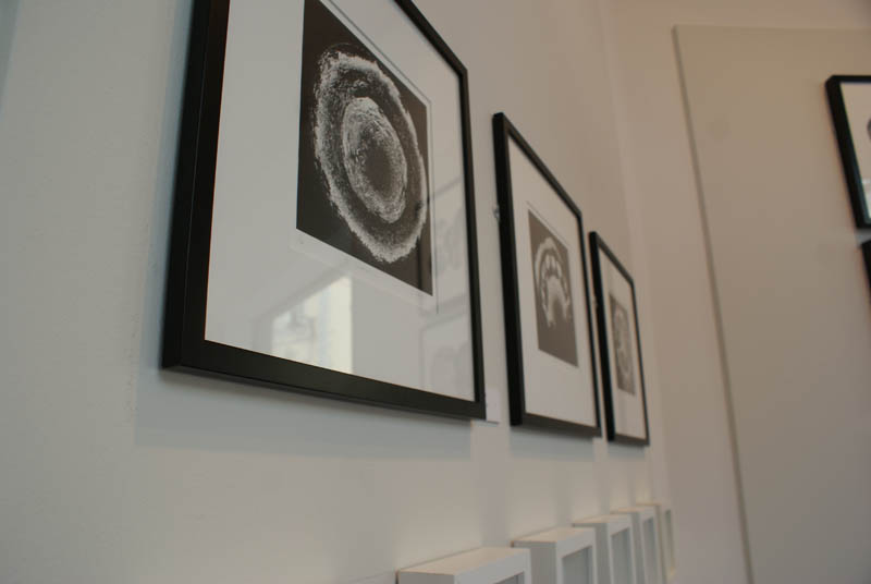 Artwork in the Gallery