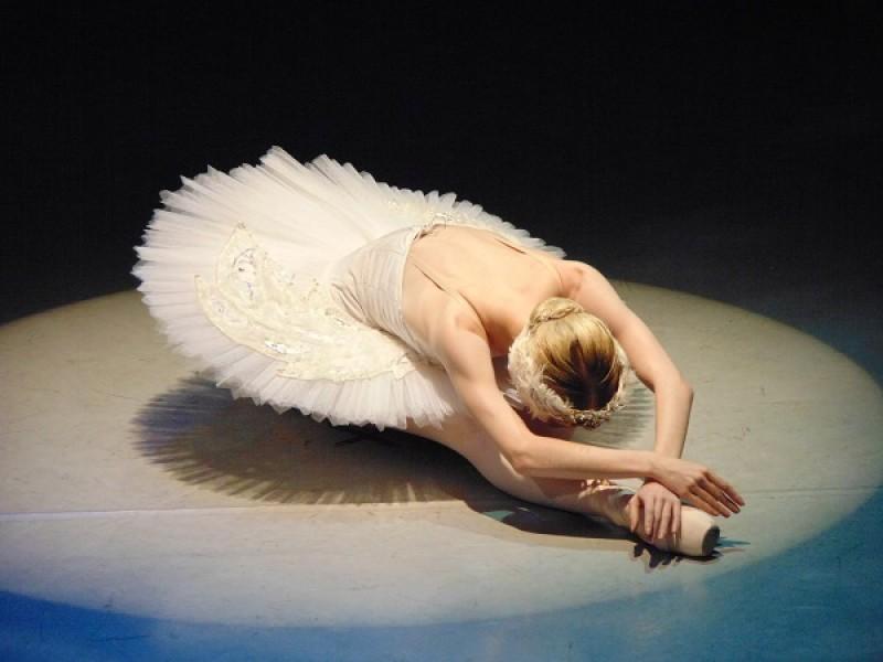 Vienna Festival Ballet: Swan Lake