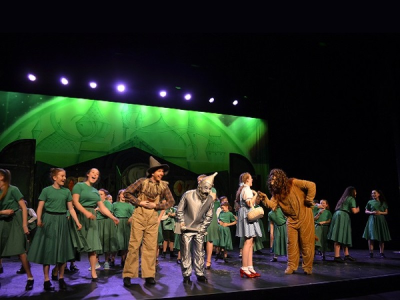 RARE Open Auditions: Wizard Of Oz