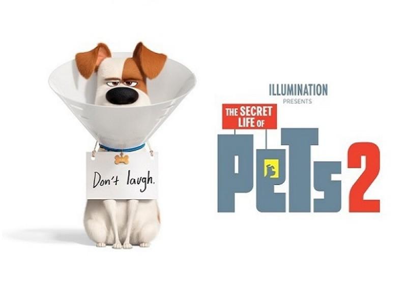 Family: The Secret Life of Pets 2 (PG)